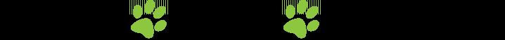 Schronisko Cywil